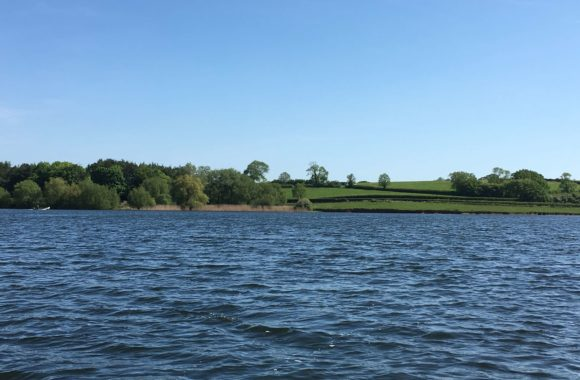SCIENTIST SUGGESTS FISH PEOPLE PARTY AT CHEW VALLEY LAKE