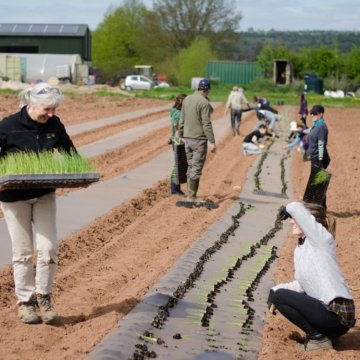 Vote for the Community Farm to build a feel good garden!